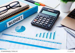Budget for the Home Selling Journey