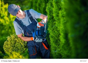 Hire a Professional Landscaper Before You List Your Residence