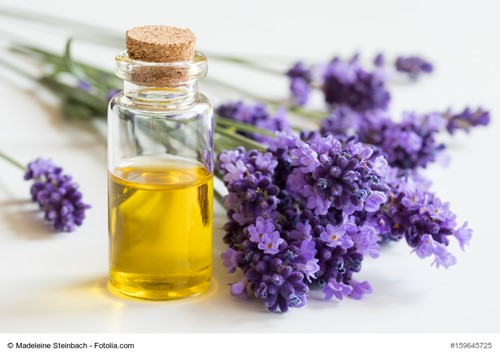 How to Get Started With Essential Oils Around the House