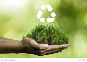 How To Reduce Waste In Your Home