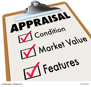 All About The Appraisal Process