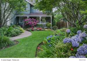 Make Your Lawn Beautiful This Summer