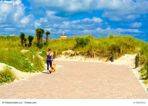 Tips For Finding the Best Place in Florida to Live