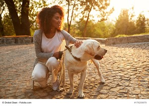 The Compelling Advantages of Dog Ownership
