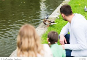 Get Your Ducks in a Row When Buying or Selling a Home