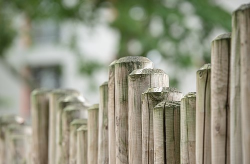 What are Spite Fences and Tree Fence Laws?