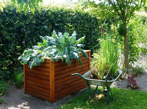 Build a Raised Bed for Your Garden