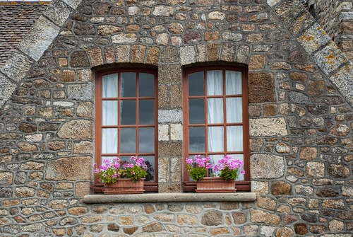 How to Choose Eco-Friendly Windows and Start Saving Green