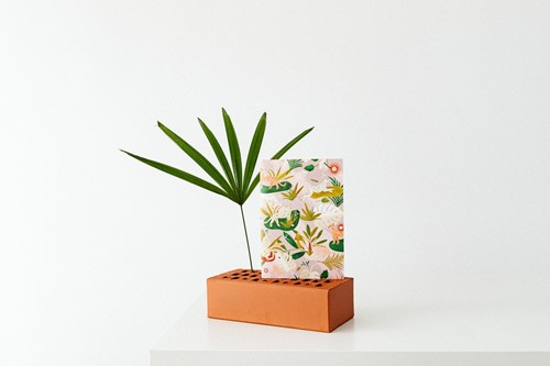 11 Easy Ways to Display Plants in the Home