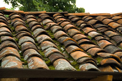 How To Tell if Your Roof Needs a Little TLC