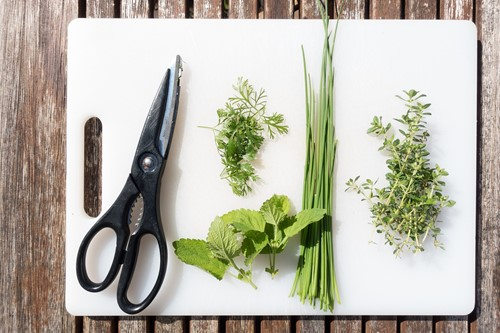 Old-School Culinary Gardening - How to Start