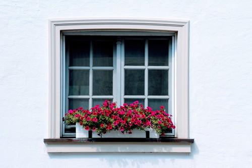 Home Improvement Projects That Add to Your Curb Appeal