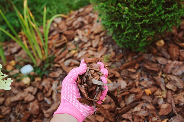 Benefits of Using Mulch Your Home Garden