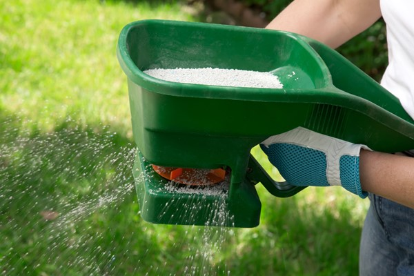 Environmentally Friendly Fertilizers For Your Garden