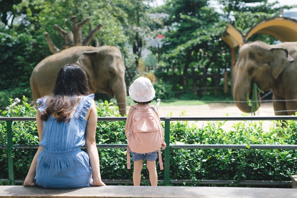Family Attractions in California you Should Visit