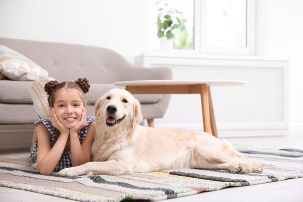 Sharing Your Home with Your Pets