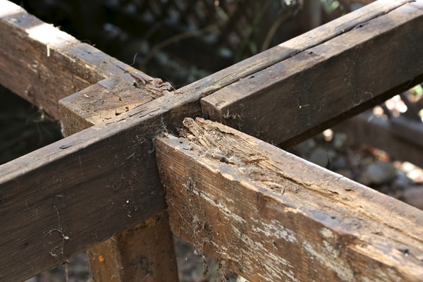 Removing Wood Rot On Your Deck