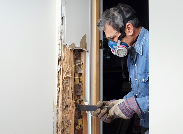 Preventing Termites in Your House