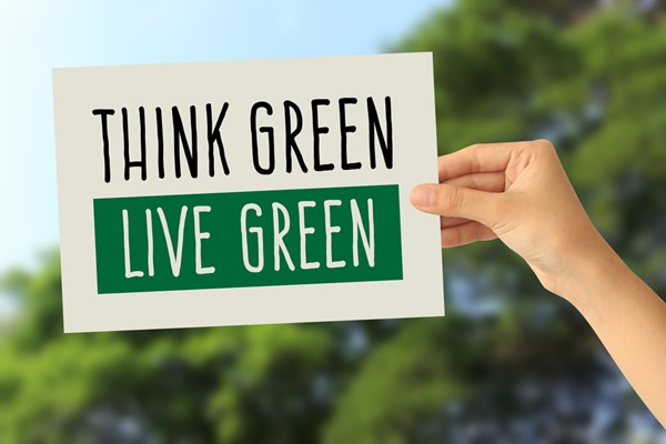 Hacks to Go Green in Your Home