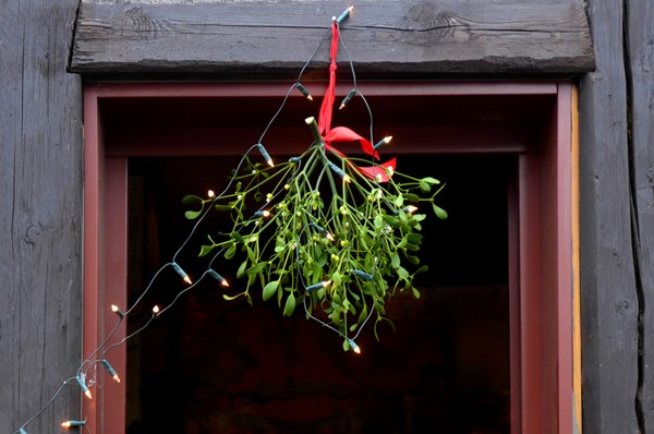 The Tradition of Mistletoe