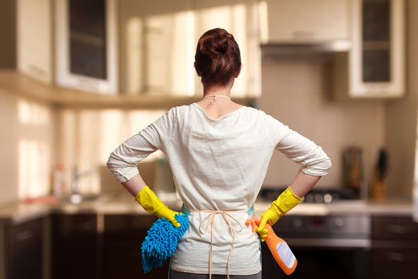 Clean Your House in an Hour or Less