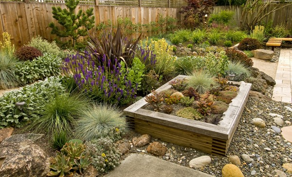 Climate Friendly Landscaping
