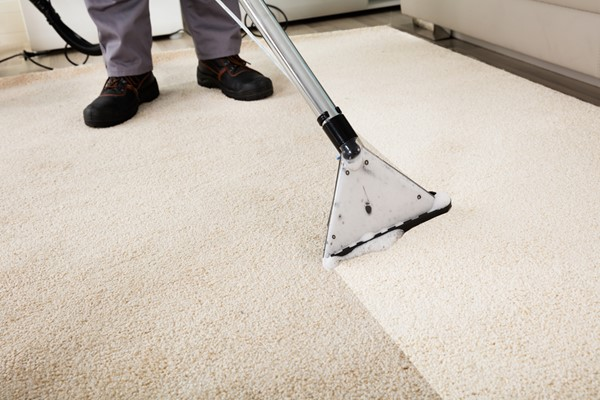 Cleaning Pet Damage on Carpet