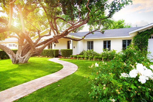 Some Ridiculously Easy and Affordable Curb Appeal Ideas