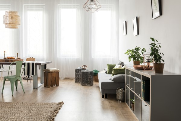 The Role of Natural Light in Choosing Your House