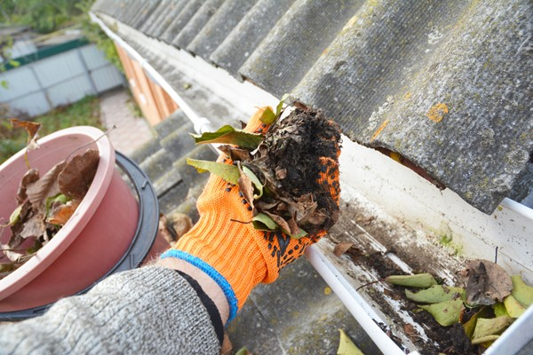3 Reasons to Clean Your Home's Clogged Gutters