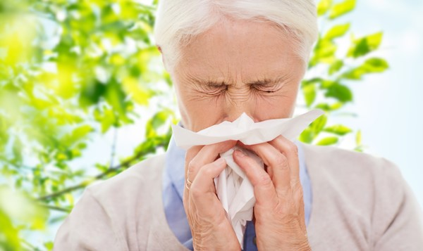 How to Prevent Hay Fever