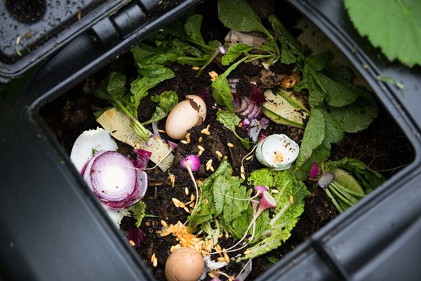 Get Started With Composting