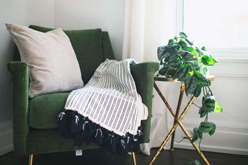 Low Light, No Problem: 5 Houseplants for Your Bedroom