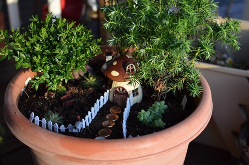 A Beginners Guide to Building Fairy Gardens