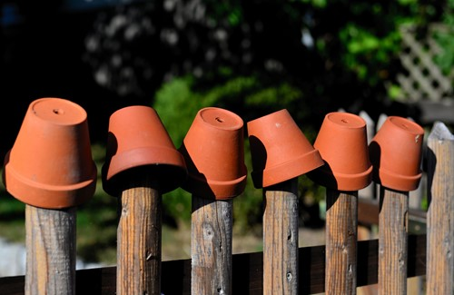 Budget-Friendly Ways to Customize Your Flower Pots