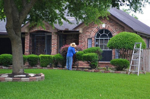 Curb Appeal the Easy Way: Landscaping Tips & Tricks