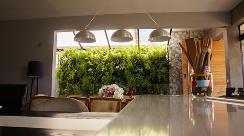 Building a New Home? Consider Adding a Living Wall