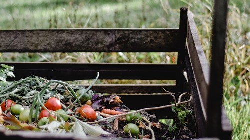 Composting at Home: How to Get Started