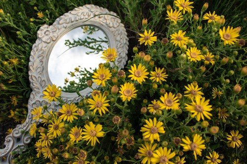 How to Use Mirrors in Your Garden Decor