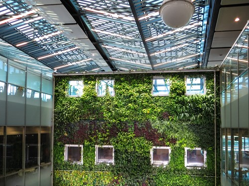 The Benefits of Living Green Walls