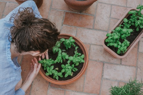 3 Ideas for Adding Planters to Your Patio