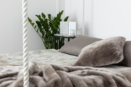 3 Space-Saving Plant Ideas for Your Bedroom