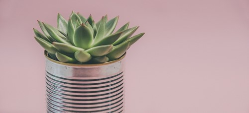 Try These DIY Flower Pot Ideas
