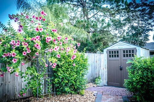 Planning to Build a Shed or Outbuilding? Here's What to Do First